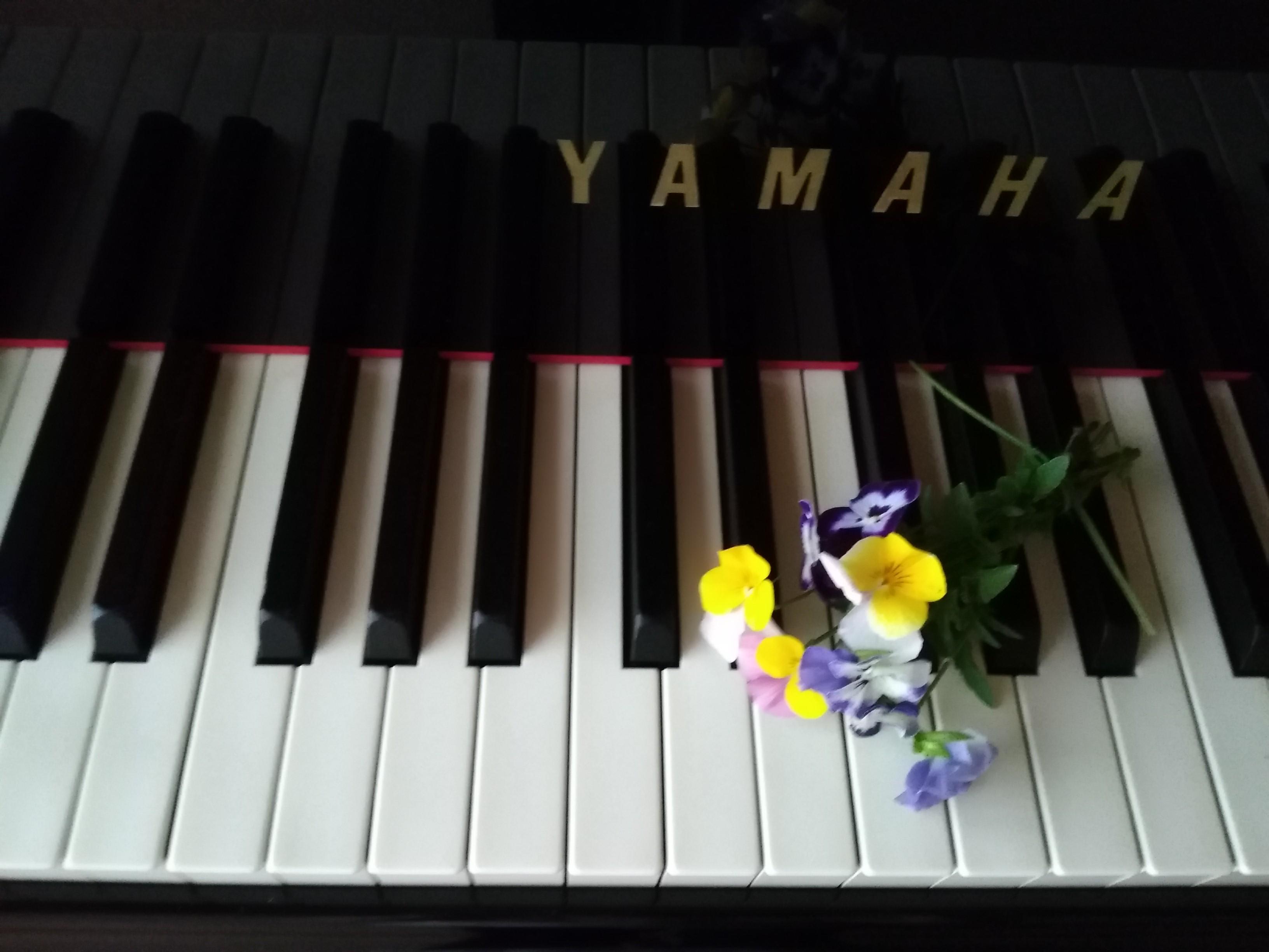 ピアノ鍵盤のタッチ!「本物の生ピアノ」でないとダメなの!?